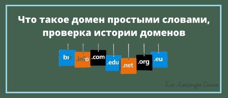 Что такое домен простыми словами, проверка истории доменов